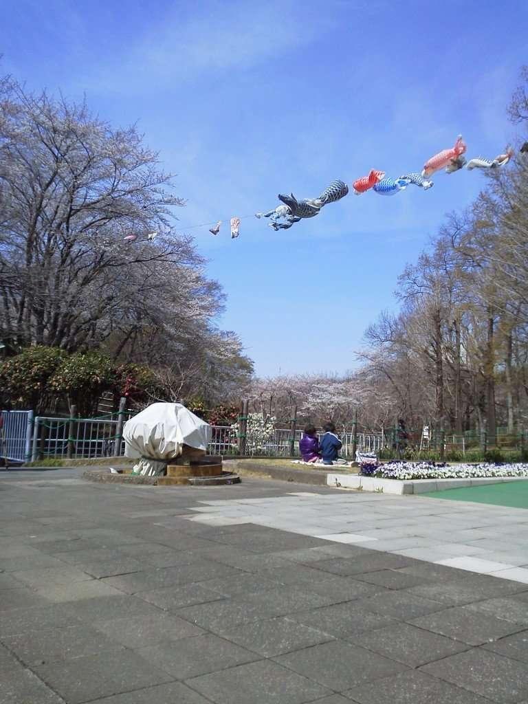 Flying carp at Kitamoto Children's Park kodomo