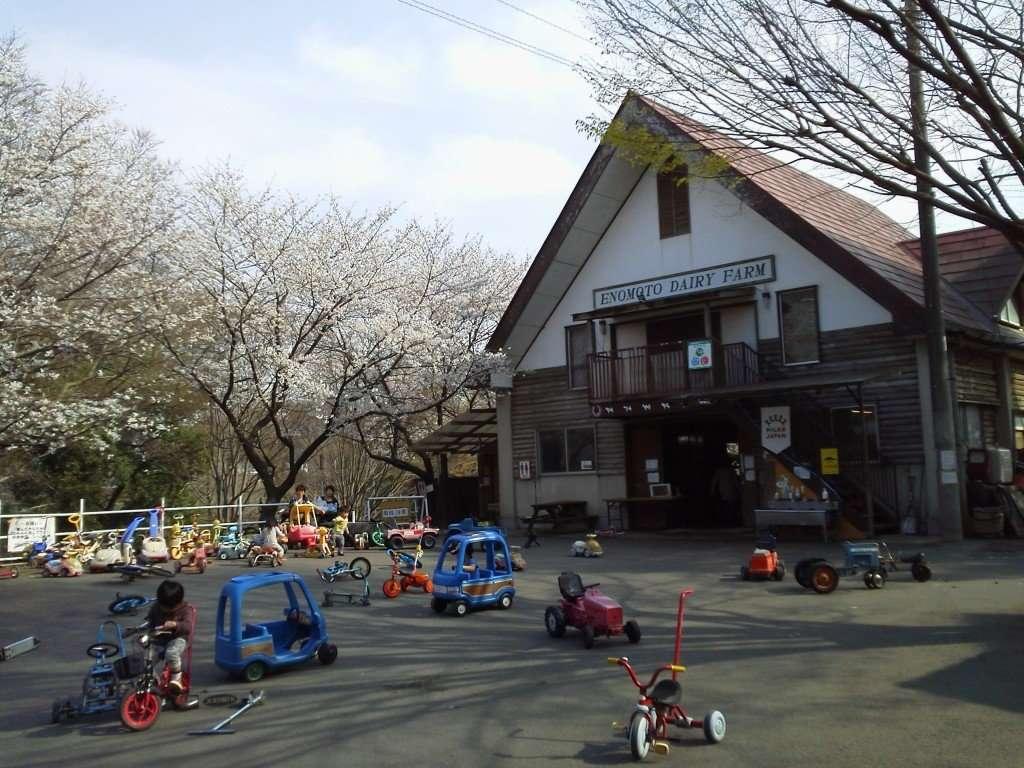 Dairy farm Saitama