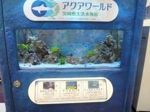 """Mini """"Aquarium"""""""