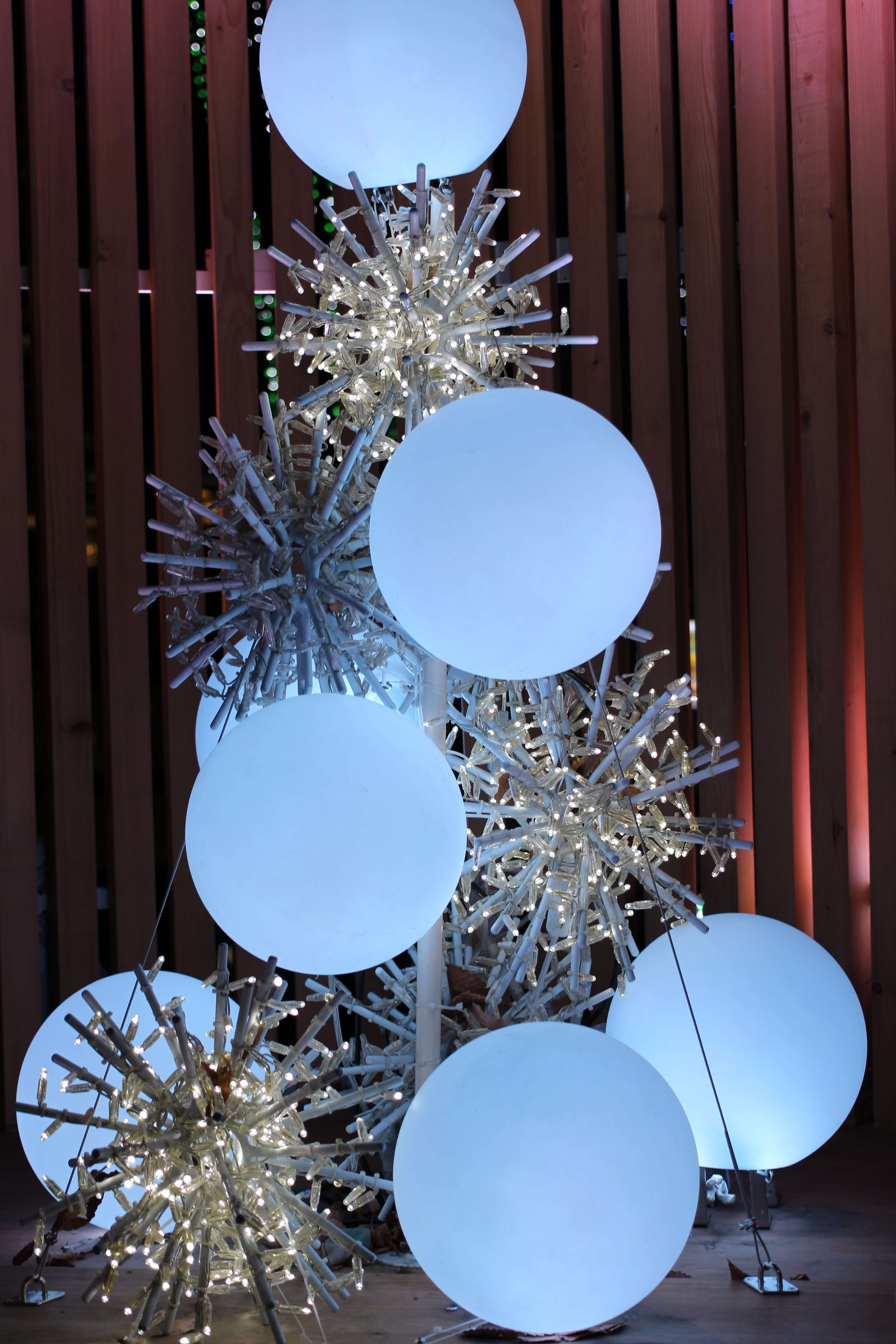 Winter Night Illumination Keyaki Hiroba (1)
