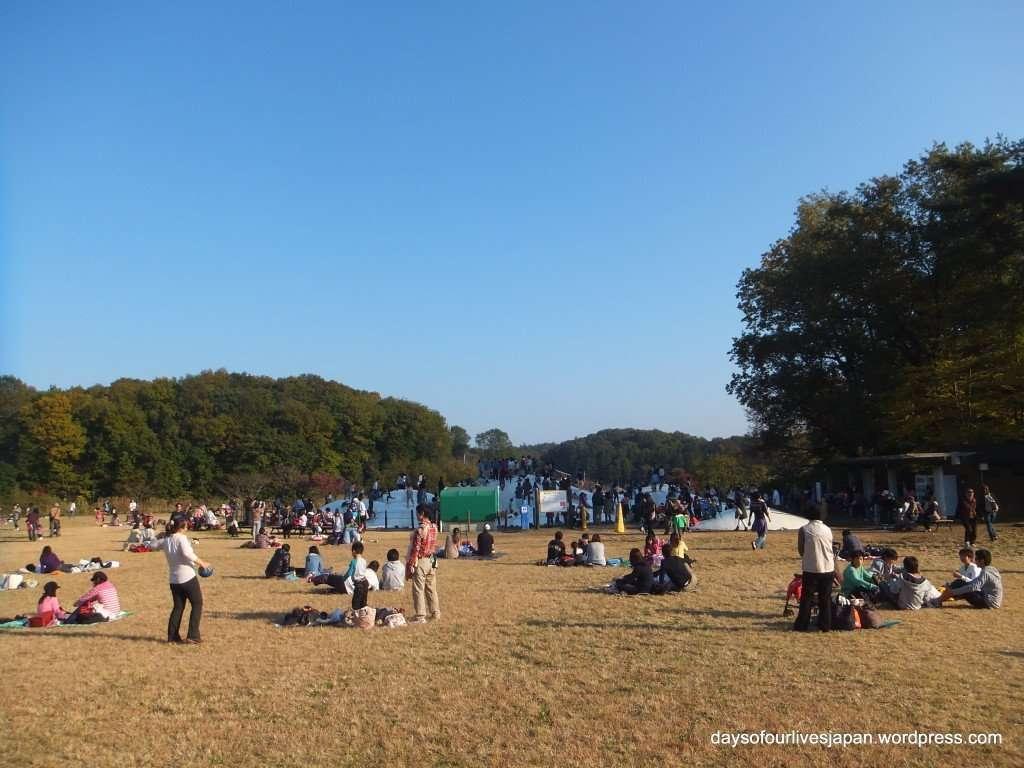Ponpoko Mountain in Shinrin Park Musashi Kyuryo national government park