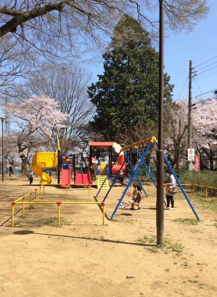 Miyoshino Shrine Kawagoe 川越三芳野神社 遊び場と桜 Playground and cherry blossoms