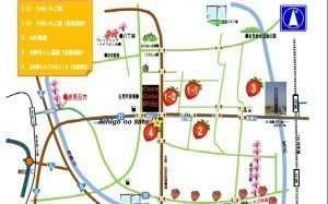 Ichigo no sato area yoshimi