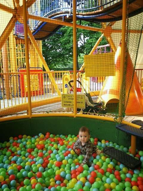 Shinrin park