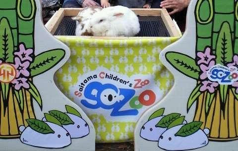Saitama Children's zoo Saitama children's Animal Nature Park