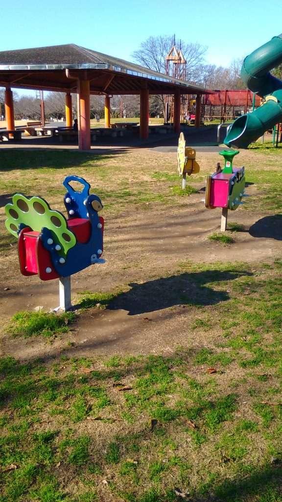 Kazo Hanasaki Park