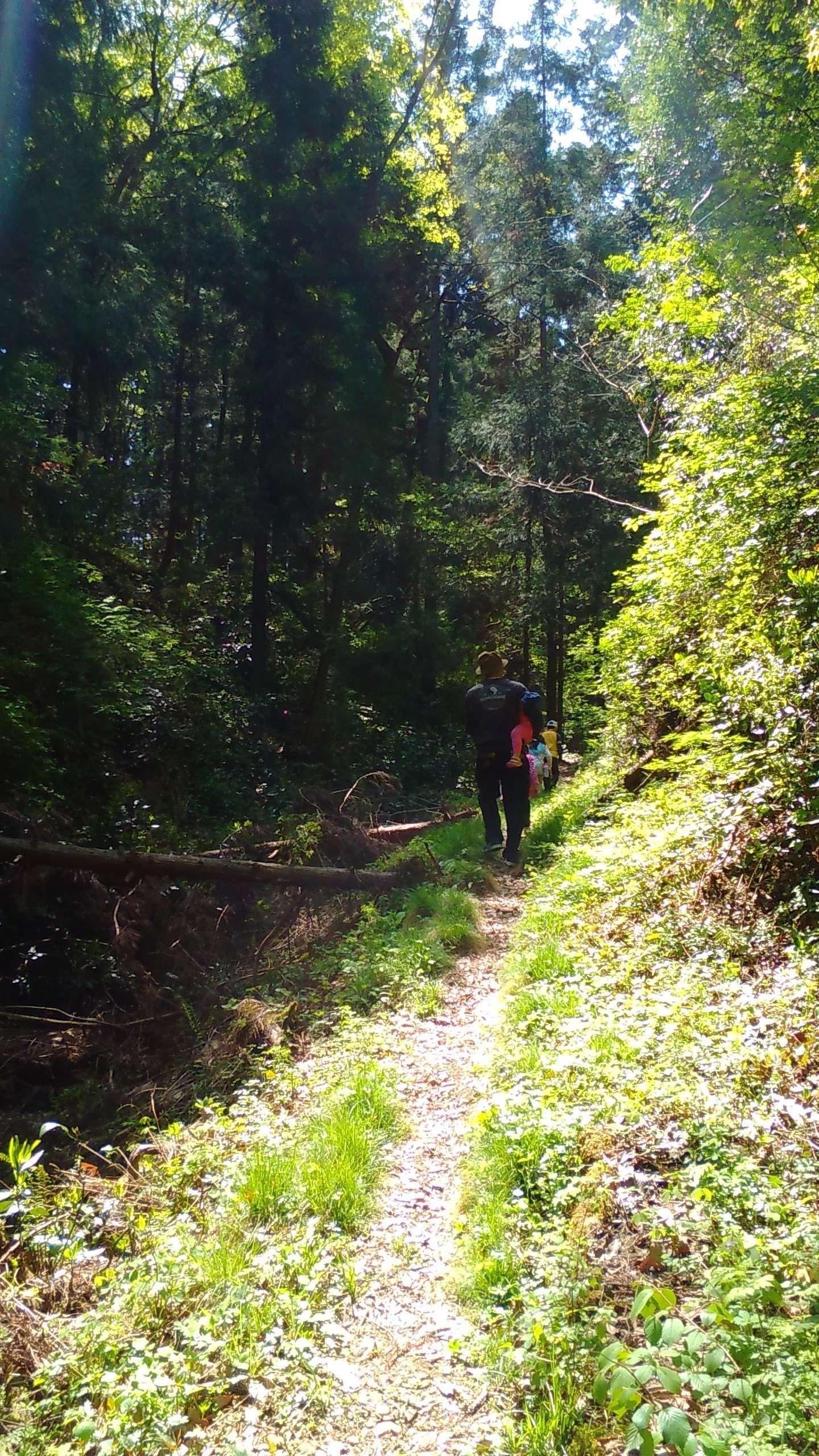 off the beaten path hiking trail to the shibazakura no oka moss phlox fields in chichibu Saitama