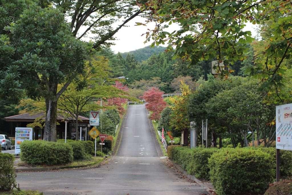 Midori No Mura Park drive from car park to retreat centre and campsite