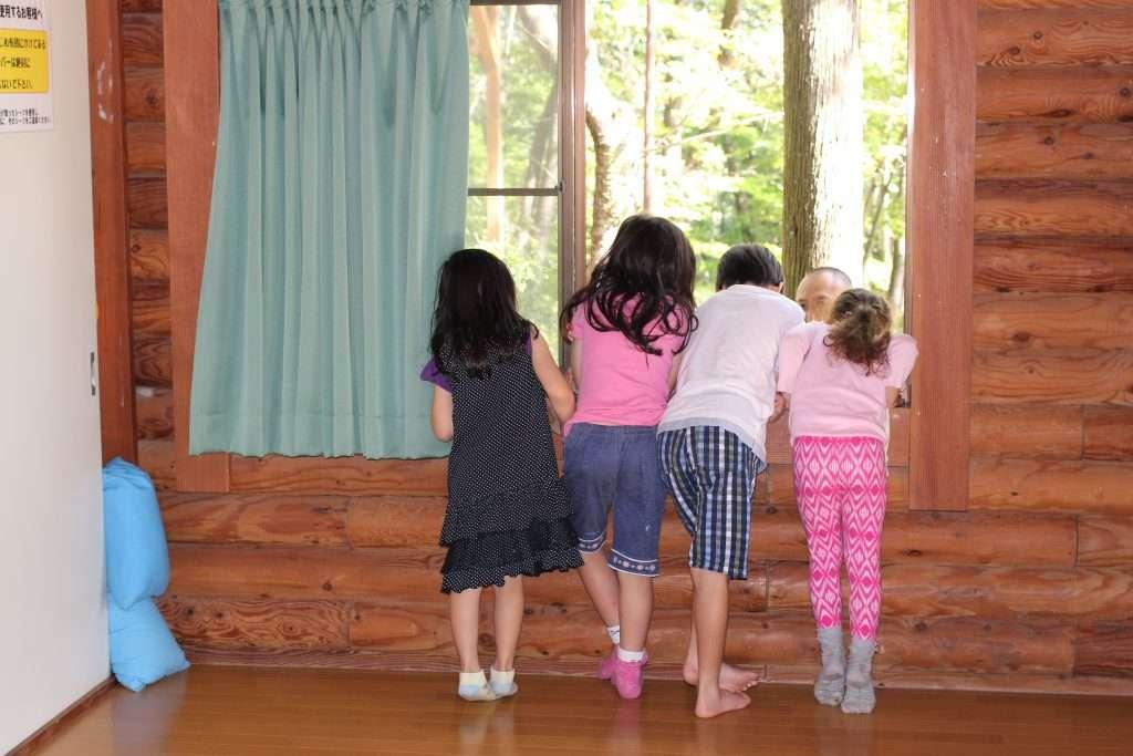 Midori No Mura Campsite window in log cabin