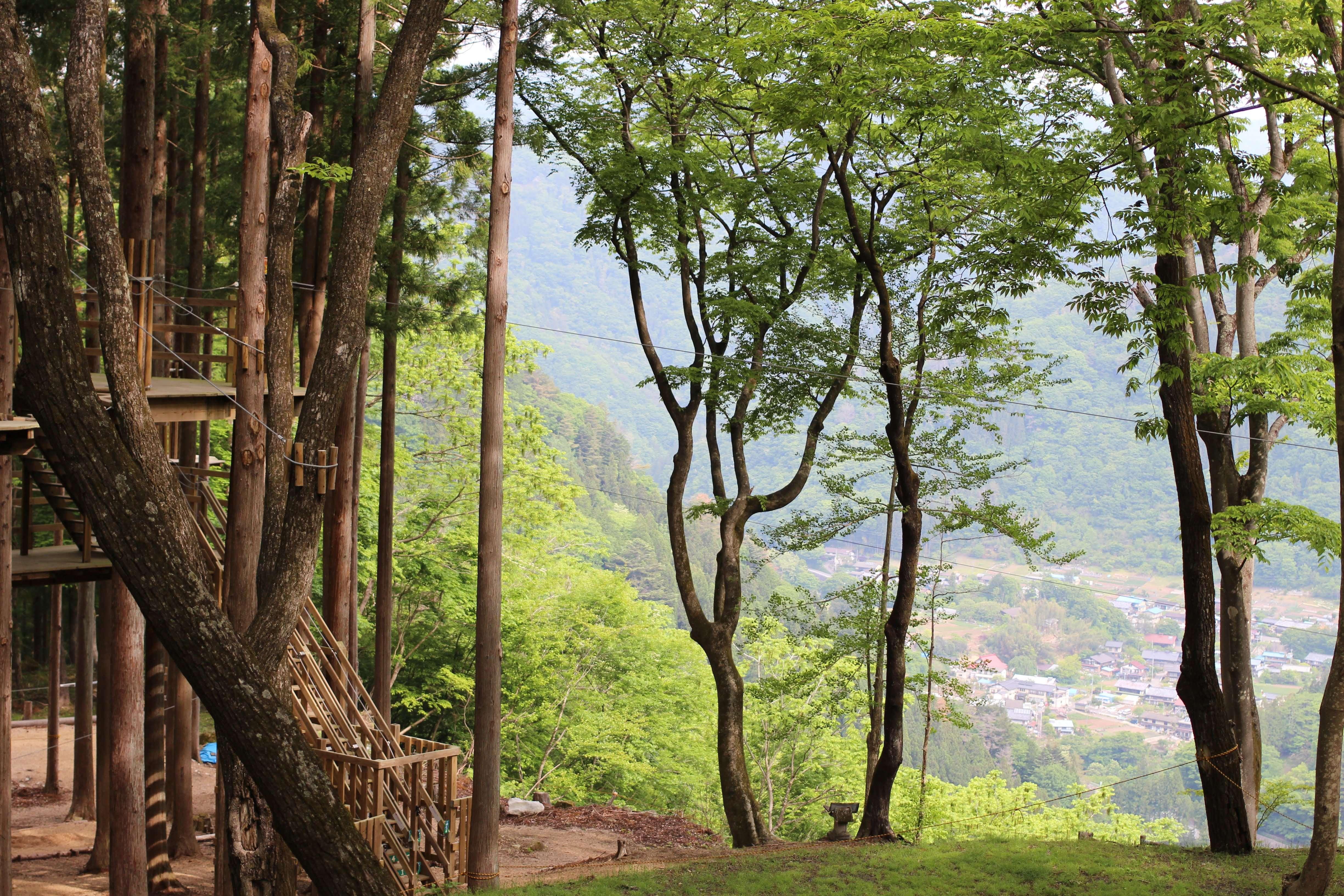 Forest Adventure at Mahoba No Mori Tano District