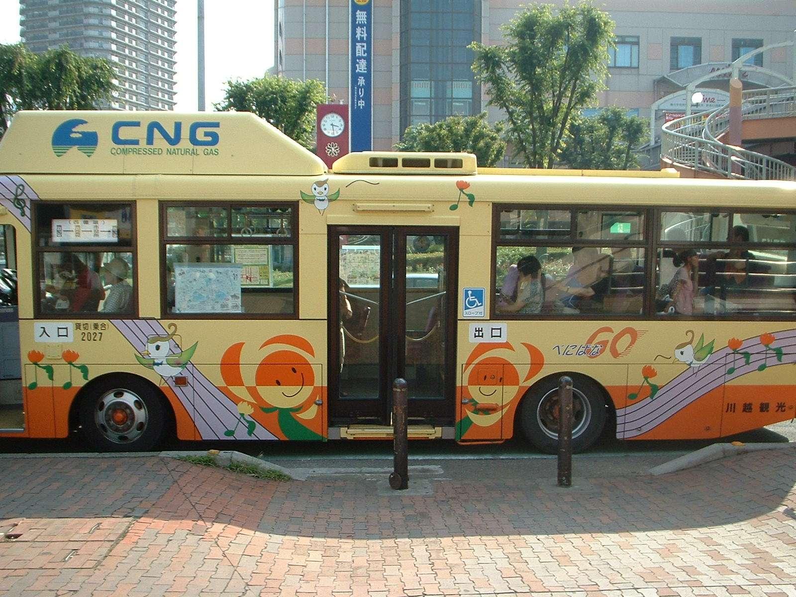 Safflower festival okegawa go bus