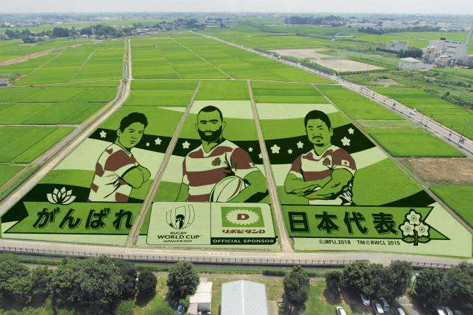Rice field art rugby 2019