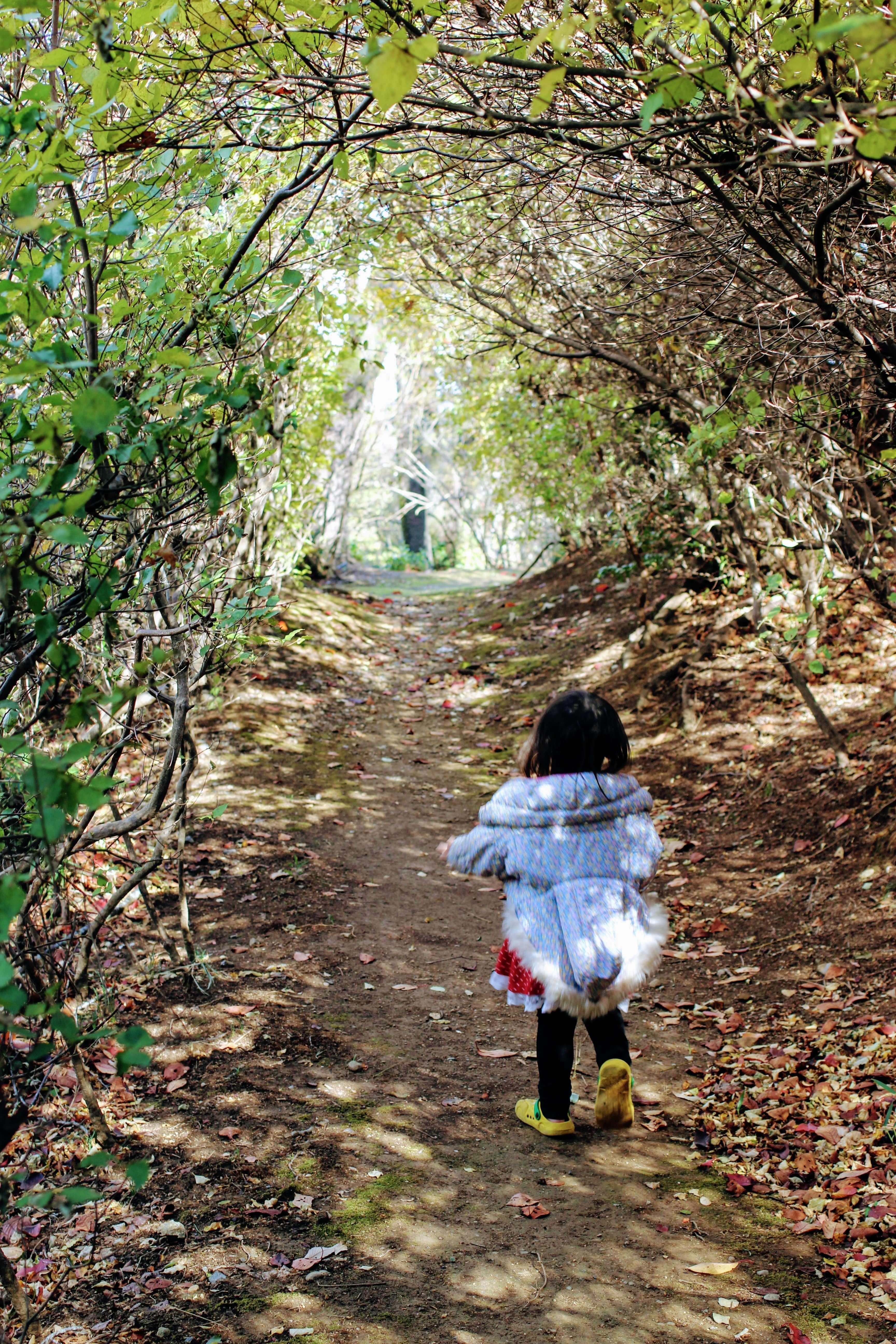 Hiking in Monomiyama Park