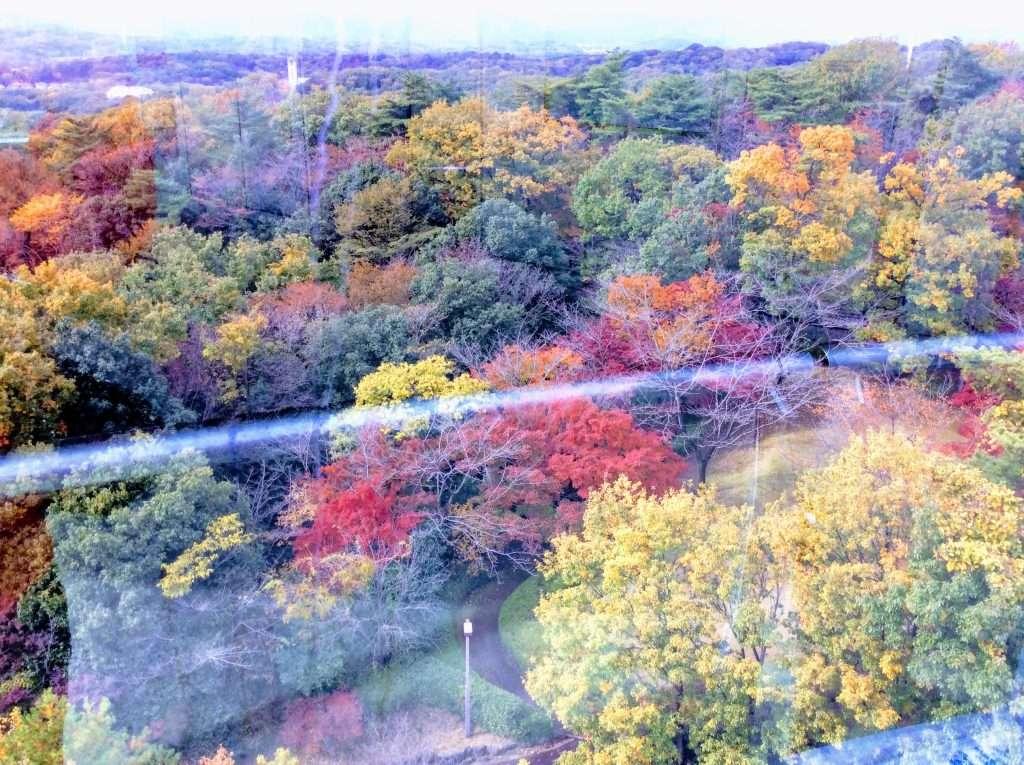 Iwadono area of Higashimatsuyama autumn colours seen from the Peace Museum of Saitama observation tower