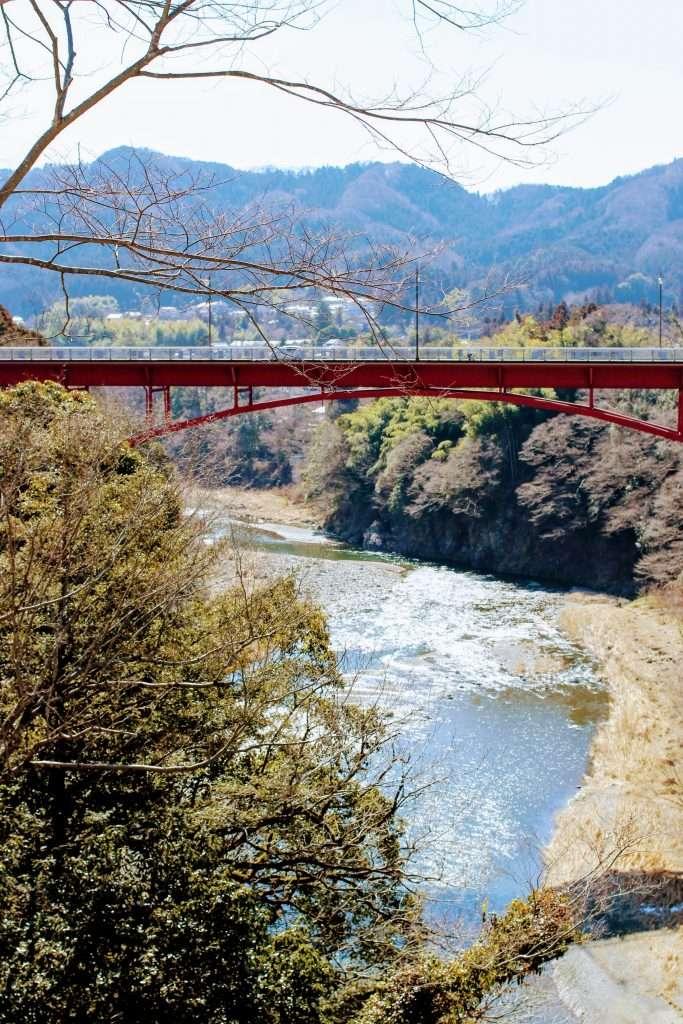View of the Tama river and Jindai bridge from Rose Town Tea Garden