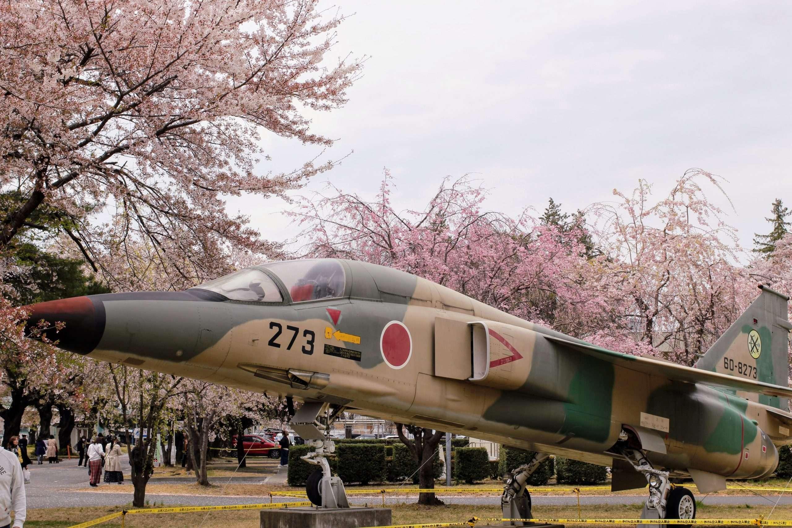 An air base cherry blossom festival in Saitama Prefecture, more info on insaitama.com