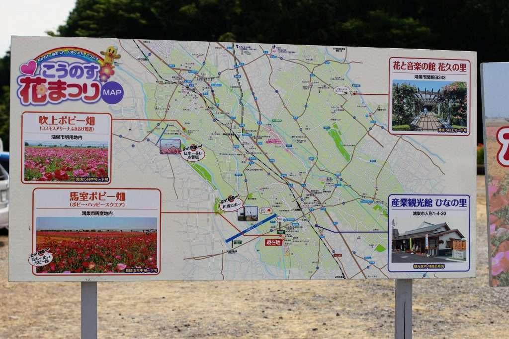 Kounosu Poppy festival field