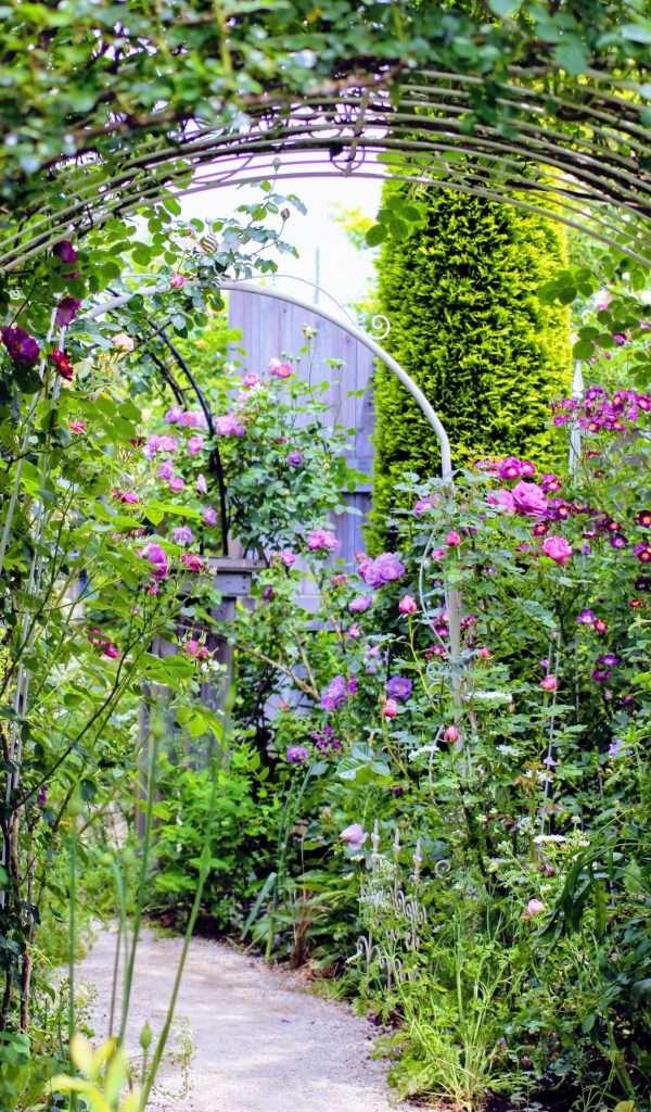 Rose Garden Cafe Greenfinger