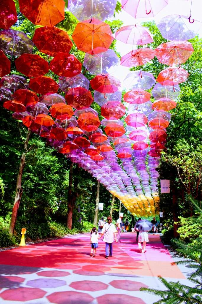 Metsa Village Umbrella Sky display