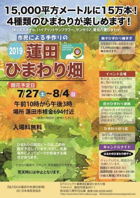Hasuda sunflower field