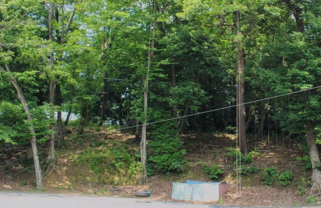 Swings galore at kinsenji Temple ranzan