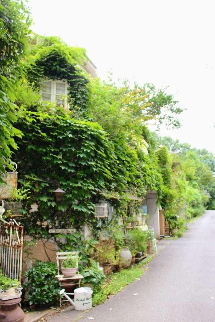Herbal House Yoshimi