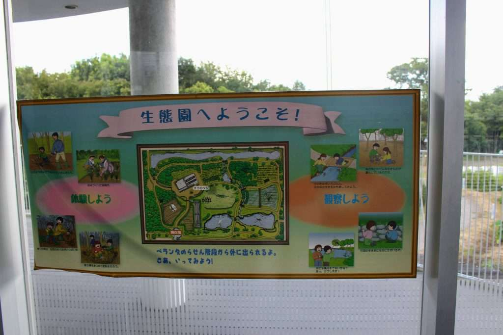 Outdoor attractions at CESS