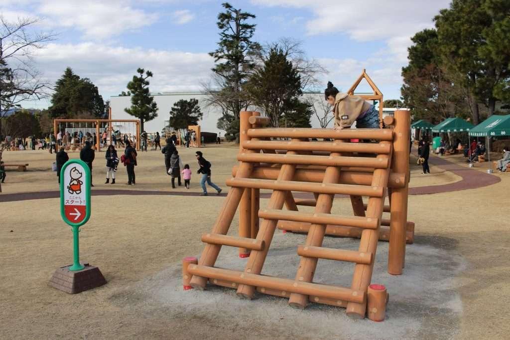 Saiboku no Mori adventure playground