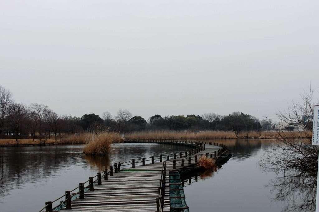 Hanyu RIverside Park