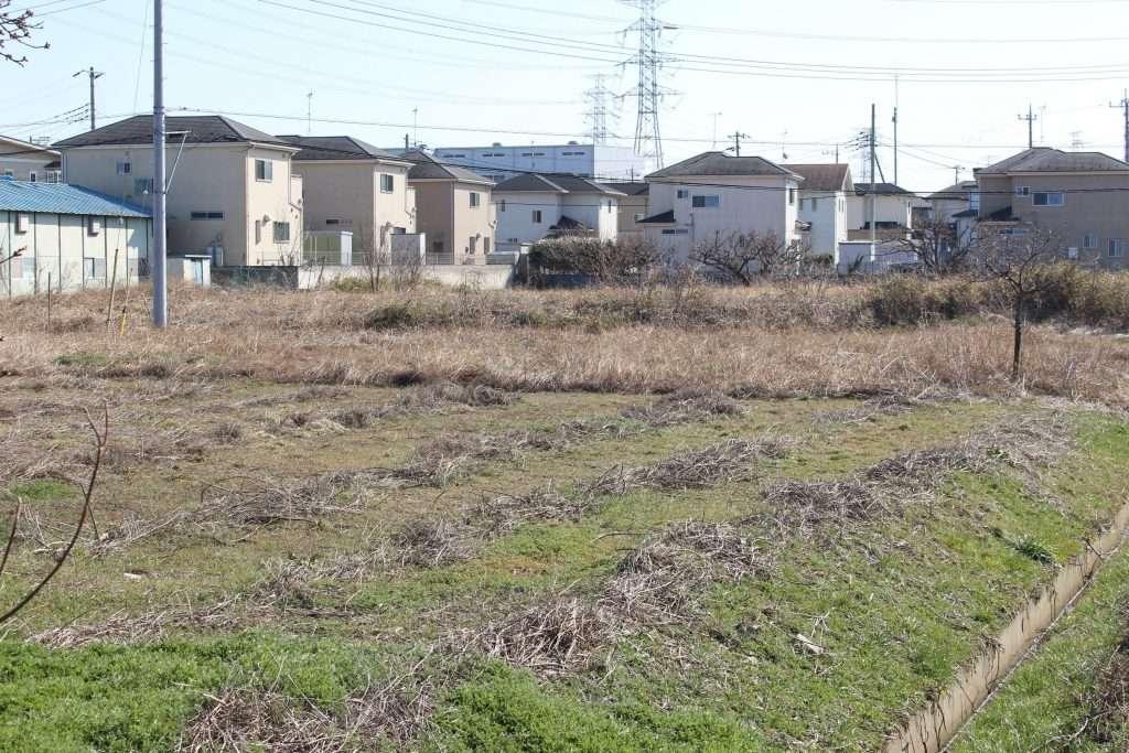 car park at sumiyoshi kawazu zakura park
