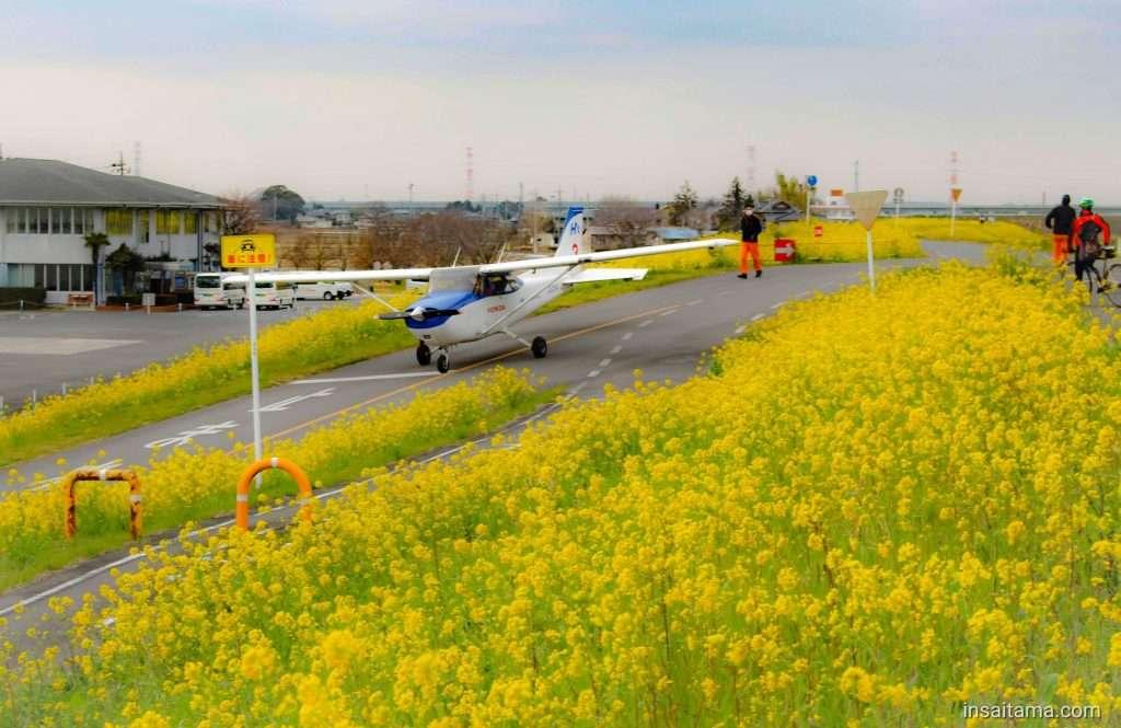 Honda Airport plane and nanohana canola flowers