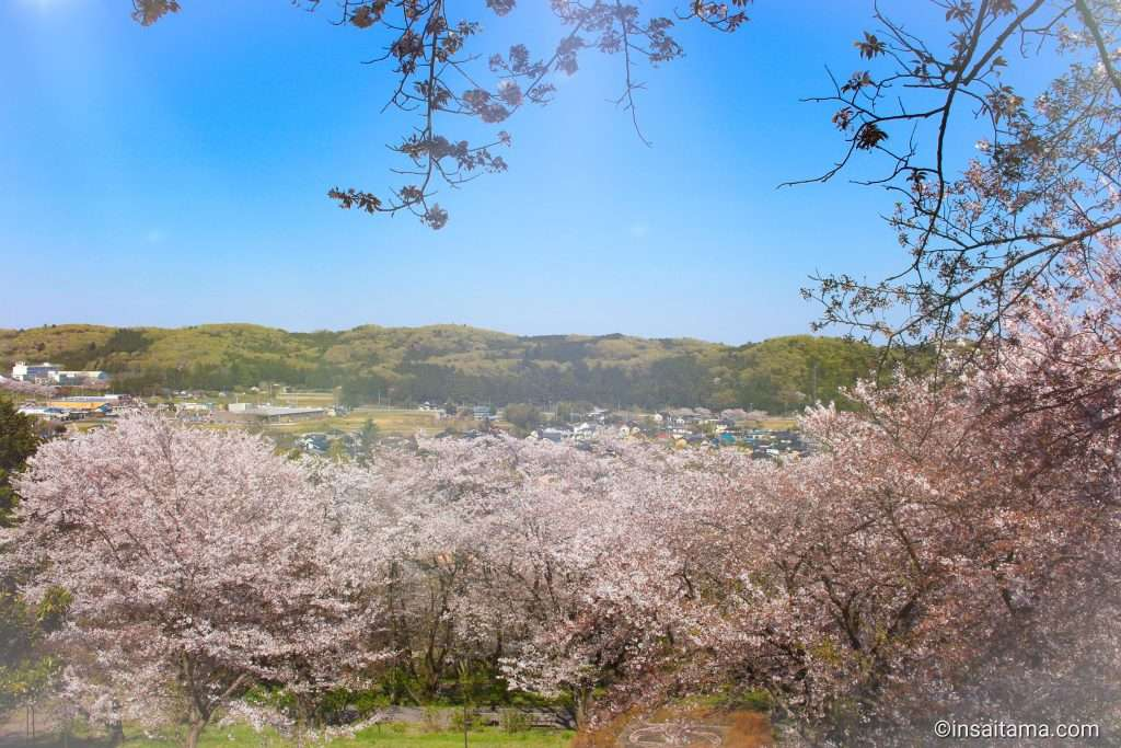 Panoramic views from Sakuranoyama