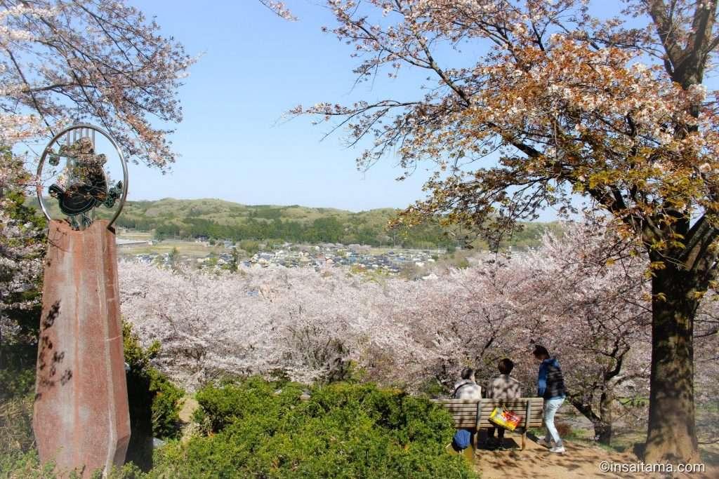 Sakuranoyama Park