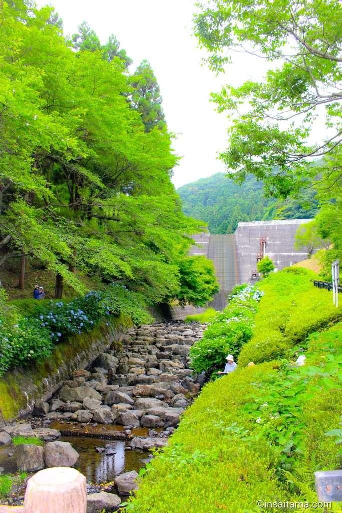 Suzume river dam park