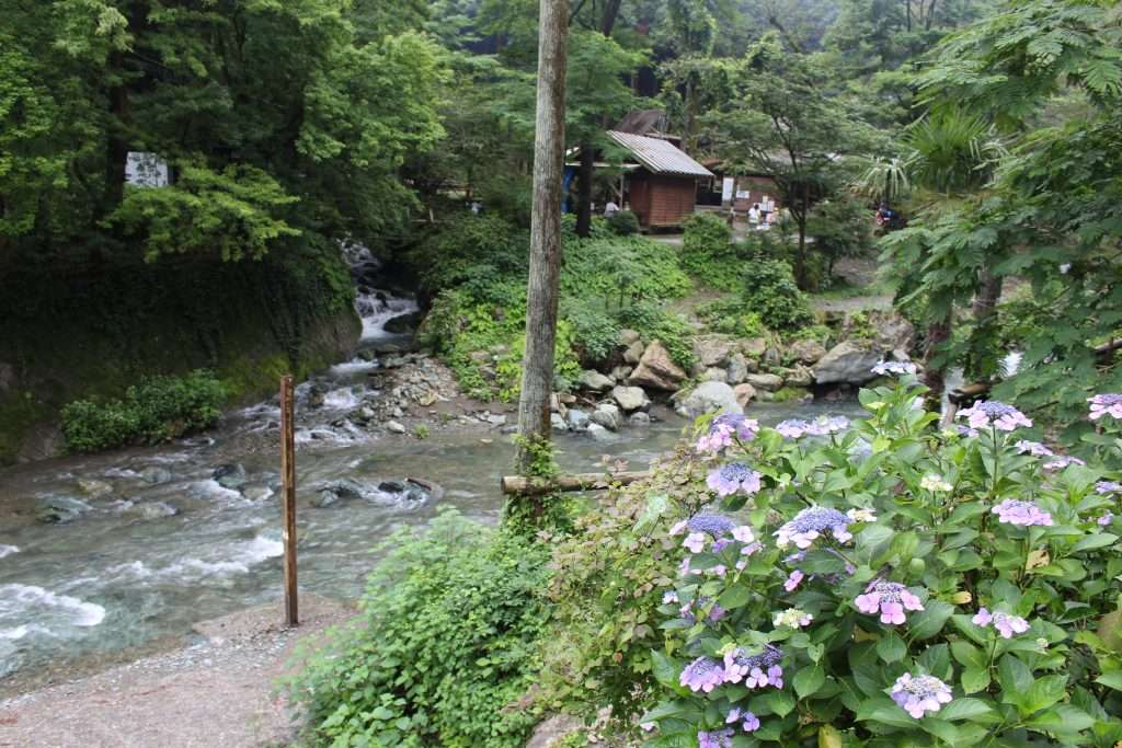 Kinomura Campsite Tokigawa