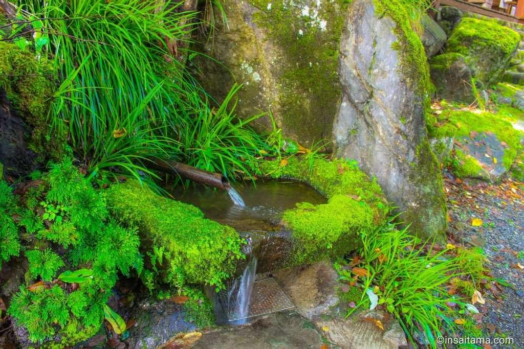 fresh water spring at tsuchiuchi