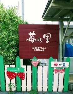 Barrier Free Ichigo no Sato Farm Moroyama