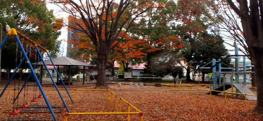 Mizohata Park Sakado 2013