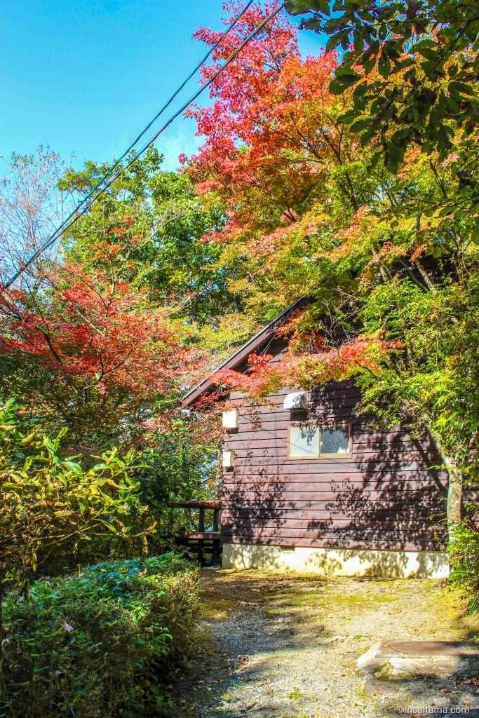 Jomine Park Campsite / Camping ground Saitama prefecture Japan