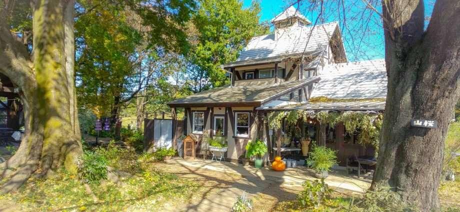 Garden and cafe Prunus Higashimatsuyama places to eat outdoors in Higashimatsuyama