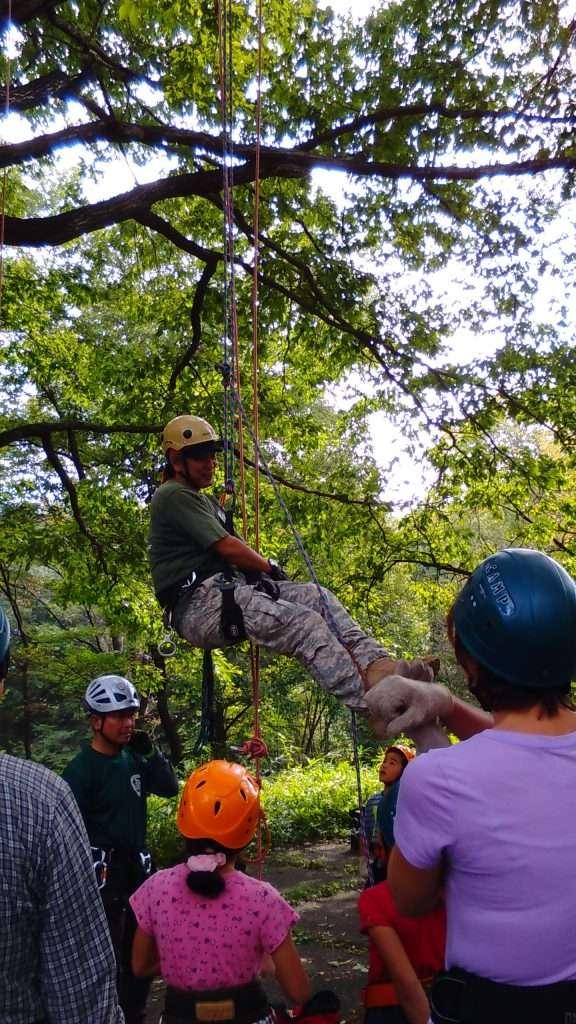 Treeing / Tree climbing in Saitama Prefecture