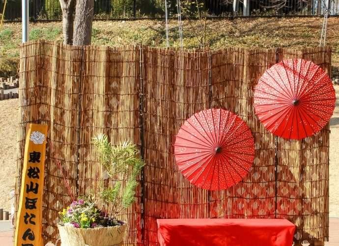 New Year display at Higashimatsuyama Botanen with Japanese brolleys