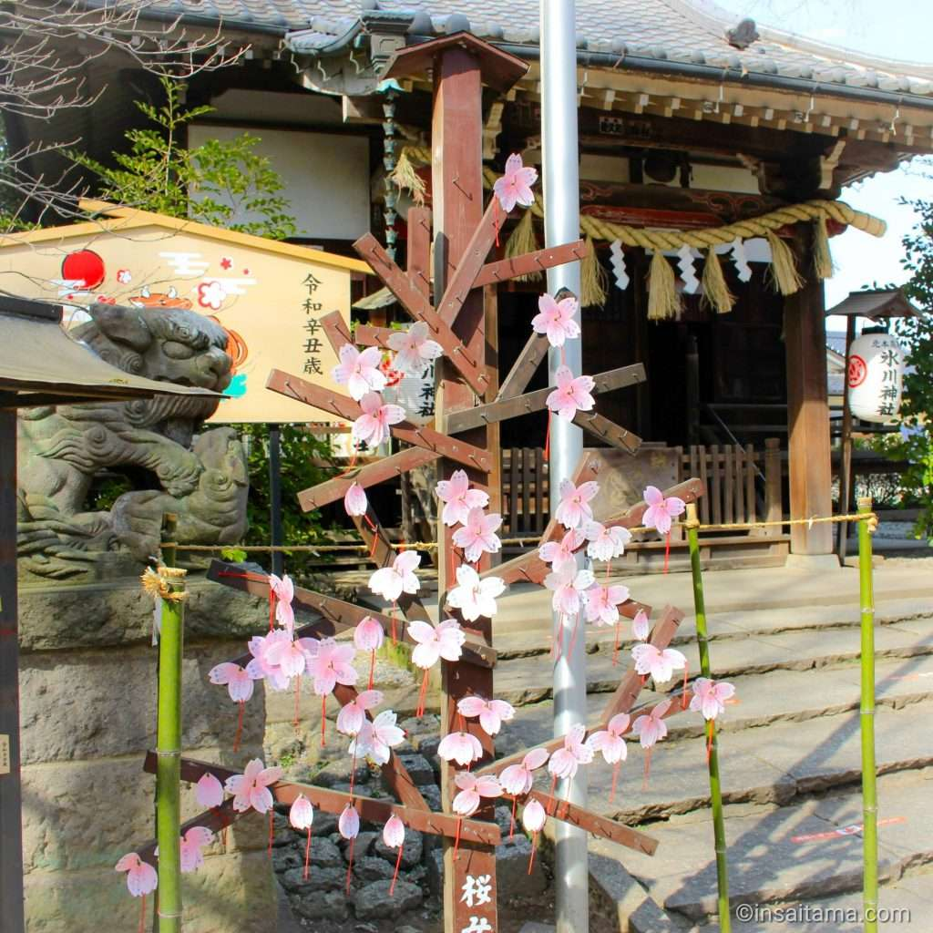 sakura petal prayers at Takao Hikawa SHrine