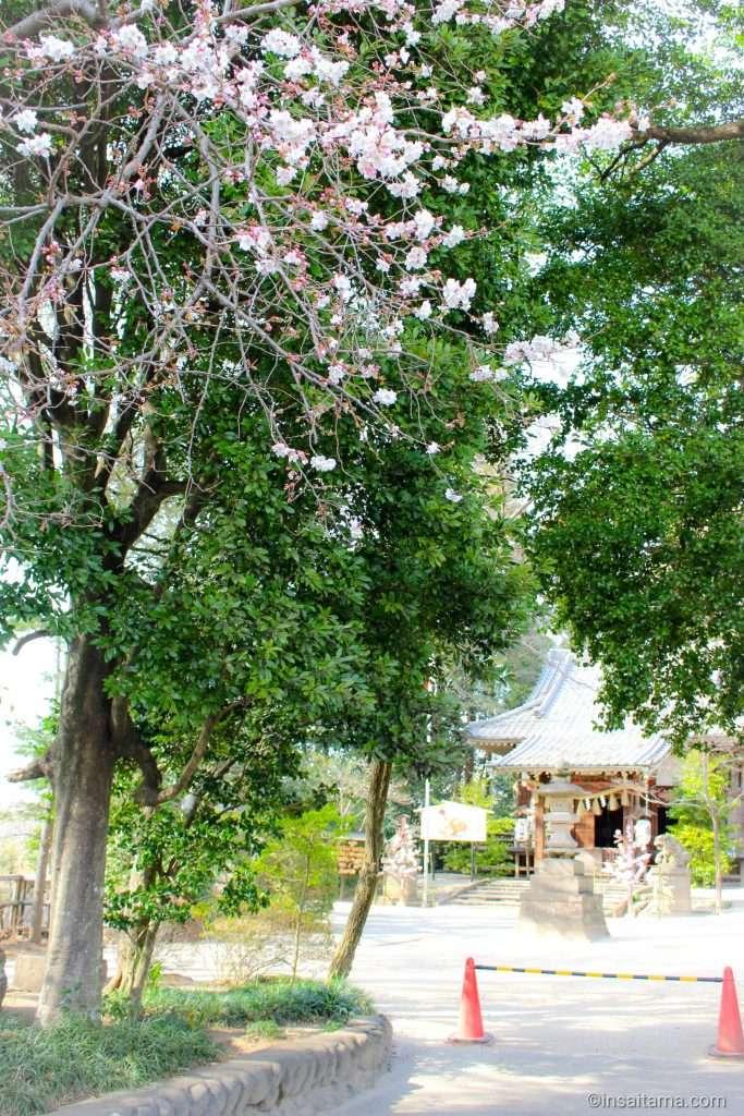 takao hikawa shrine kitamoto saitama ken