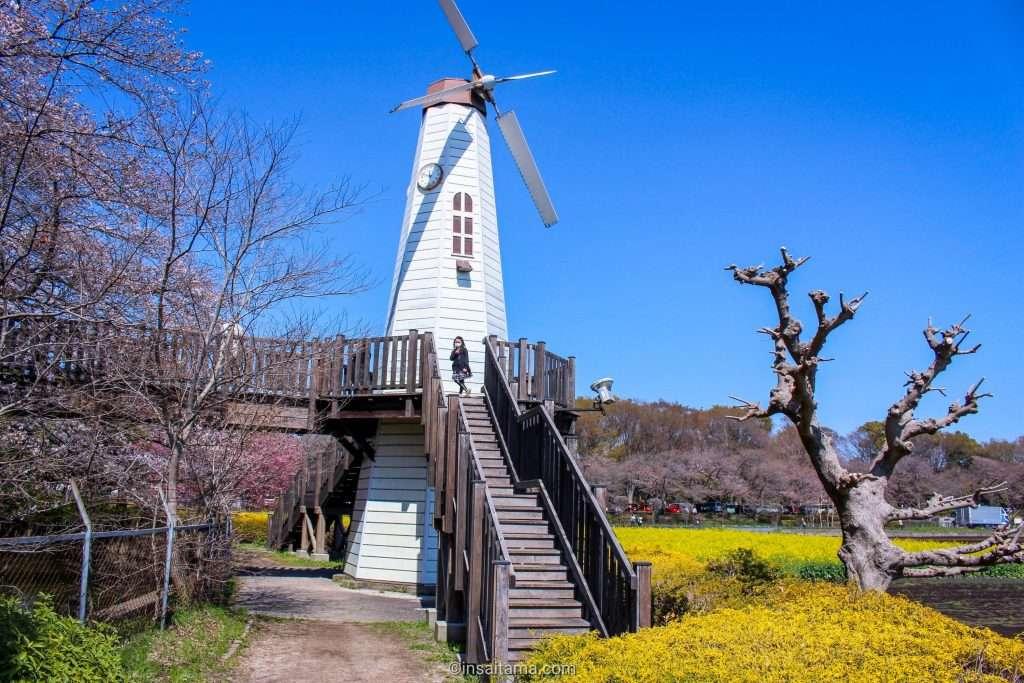 windmill at miharashi park saitama city