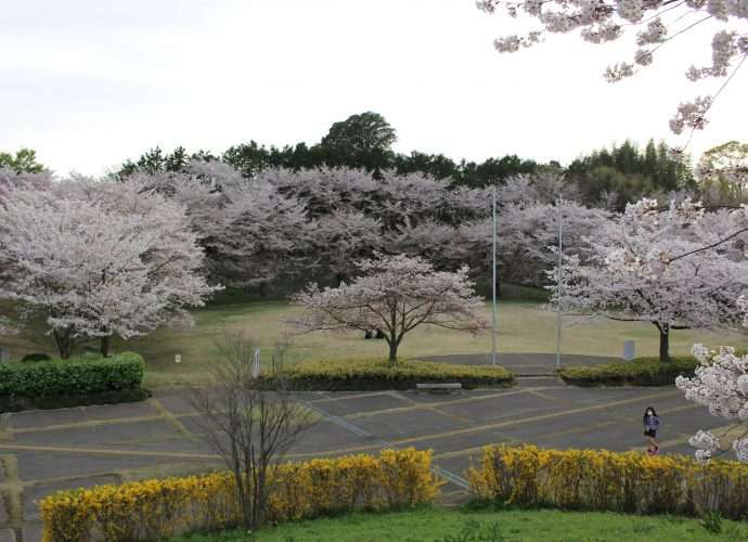 Kitamoto Sun Amenity Camp Field