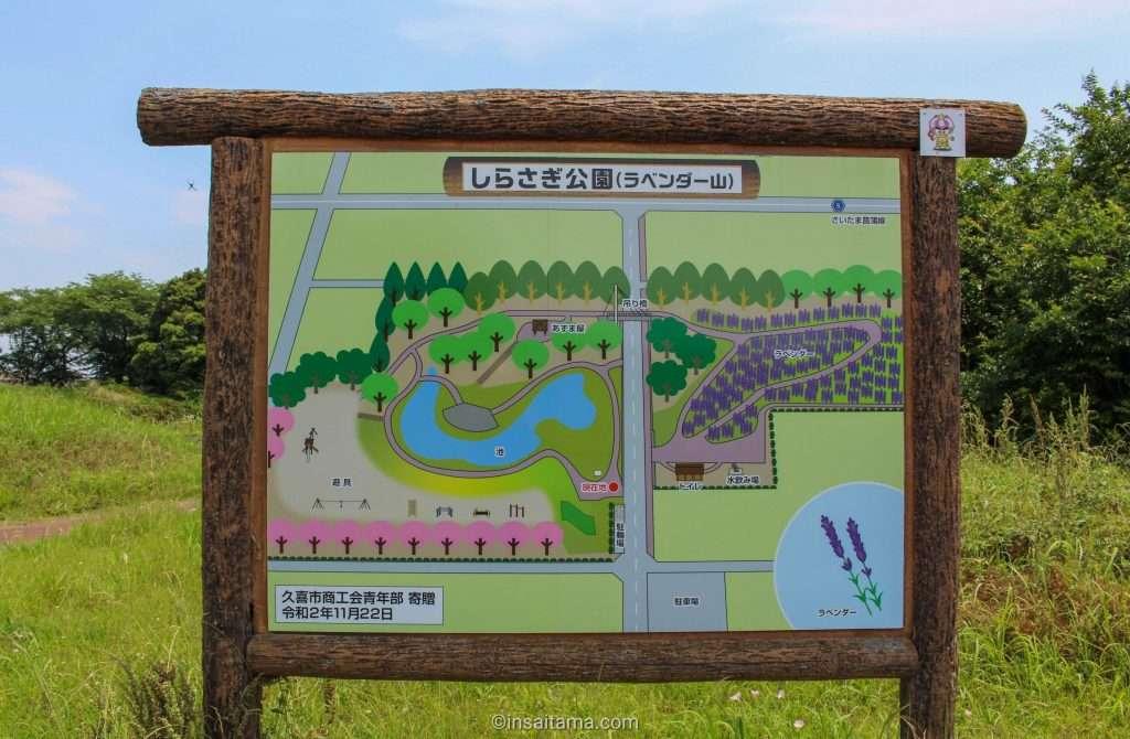 Map of lavender hill at Shirasagi Park in Kuki Saitama Prefecture