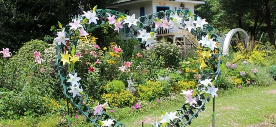 Lilies at Fukaya Green Kingdom