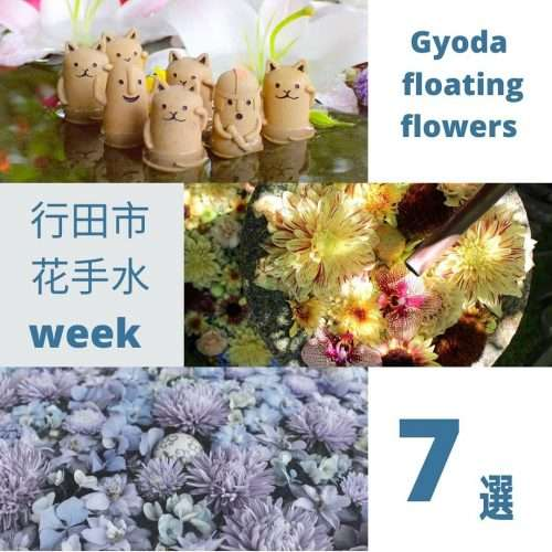 hanachozu week in Gyoda