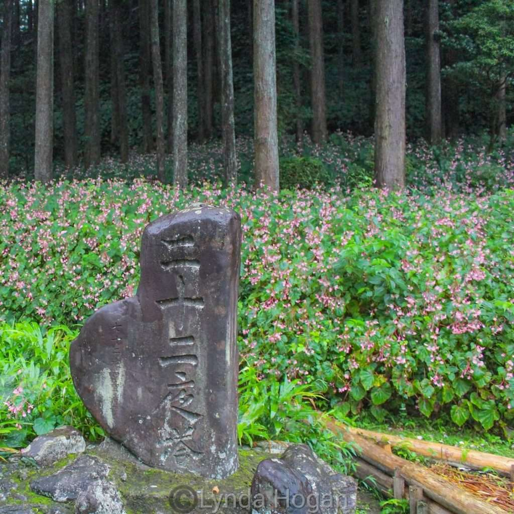 Moon waiting stone Ogawa